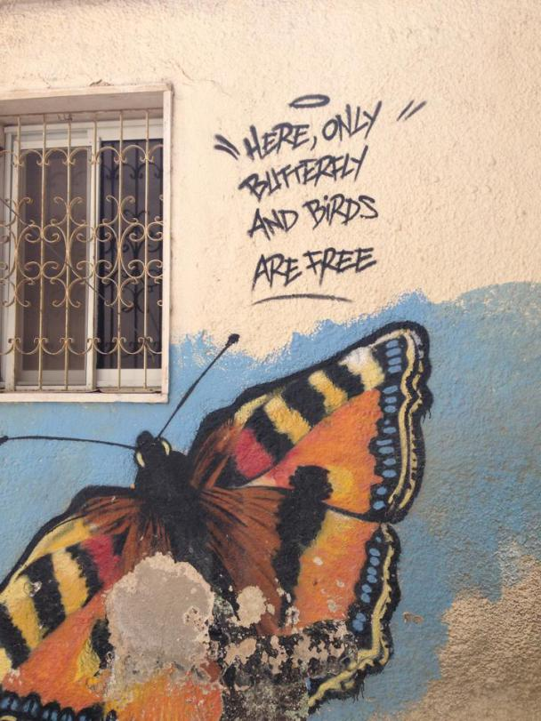 """""""Here, only butterfly and birds are free"""". Photo: Masih Sadat/The Turban Times."""