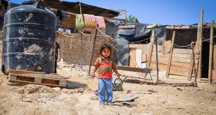 Why is the Israeli government displacing Bedouins from their homes?