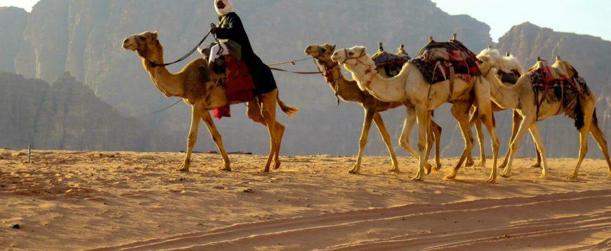 Bedouins –the backbone of Jordanian culture