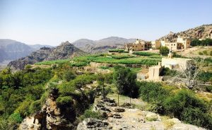 From rocks to agriculture – the ingenuity of the Omani Aflaj system