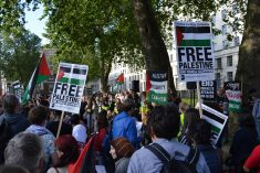 WATCH: BDS from a feminist perspective