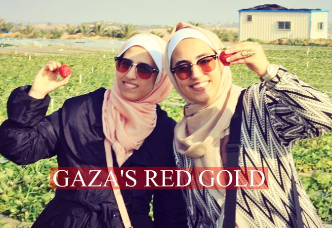 Khaldi Twins: Gaza's Red Gold!